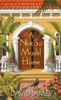 A Not So Model Home (Paperback)