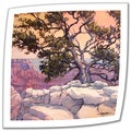 Rick Kersten 'North Rim Tree' Unwrapped Canvas
