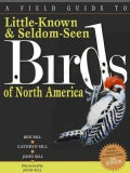 A Field Guide to Little-Known & Seldom-Seen Birds of North America (Paperback)