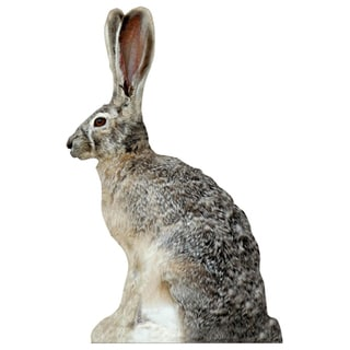 Extreme Phantom HD Jack Rabbit Decoy