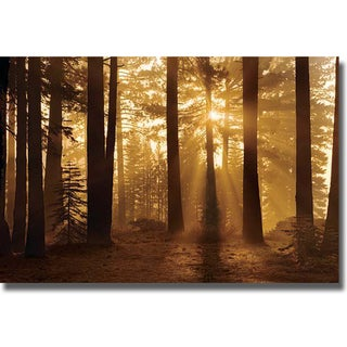 Mike Jones 'Tahoe Smokey Sunrise' Canvas Art