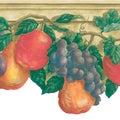 Multicolor Painted Fruit Border Wallpaper