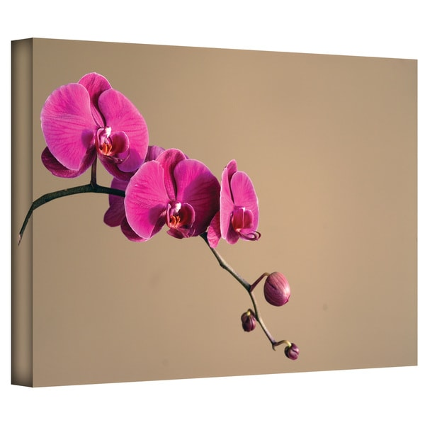Elena Ray 'Magenta Orchid' Gallery-Wrapped Canvas