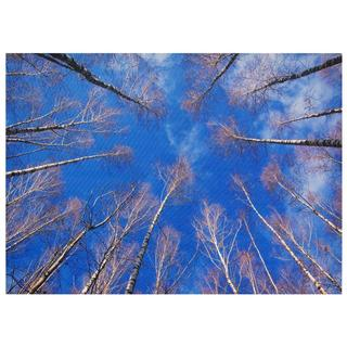 Treetops Canvas Wall Art