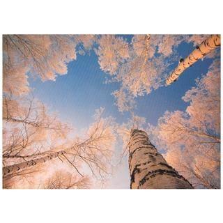 Treetops in Daylight Canvas Wall Art