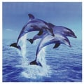 Three Rising Dolphins Canvas Wall Art
