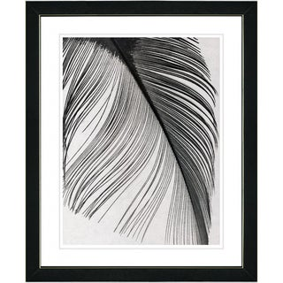 Studio Works Modern 'Feather' Framed Print
