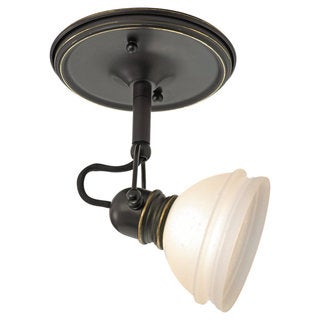 Sea Gull Lighting Ambiance Transitions Trenton Directional Mono-point Light