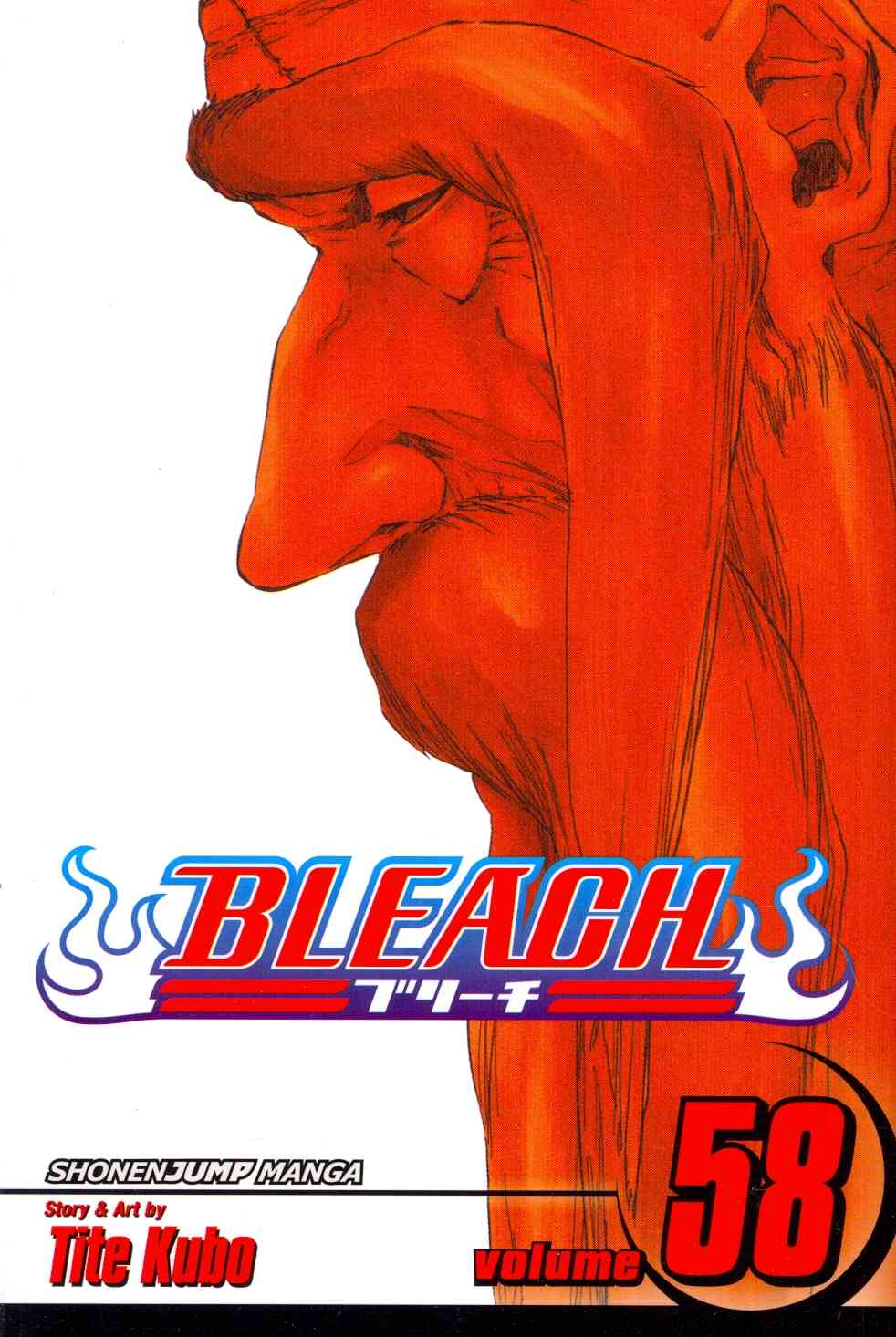 Bleach 58: The Fire (Paperback)