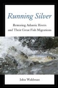Running Silver: Restoring Atlantic Rivers and Their Great Fish Migrations (Hardcover)