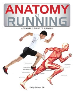Anatomy of Running: A Trainer's Guide to Running (Paperback)
