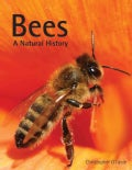 Bees: A Natural History (Hardcover)