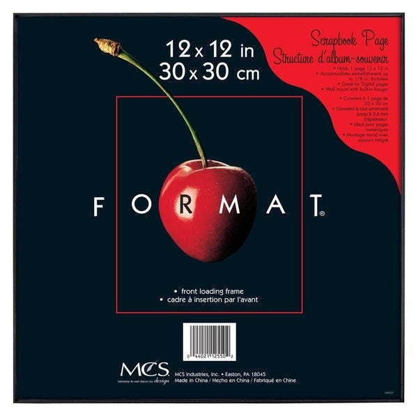 MCS 12 inches x 12 inches Black Format Frame
