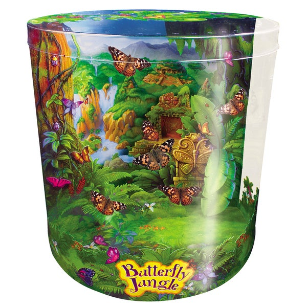 Butterfly Jungle Live Habitat
