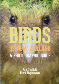 Birds of New Zealand: A Photographic Guide (Paperback)