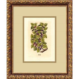 'Mulberry (Morus)' Framed Art Print