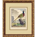 'The Pheasant (Le Faisan)' Framed Art Print