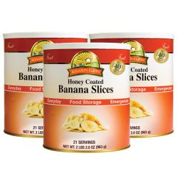 Augason Farms 3-pack Honey Coated Banana Slices