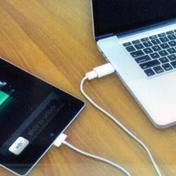 Vivitar USB Charger for iPad