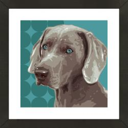 Framed Weimaraner Giclee Print Photo