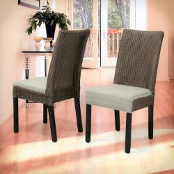 Christopher Knight Home Samson Brown and Beige Rattan and Linen Dining Chairs (Set of Two)