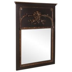 Robyn Antique Black Mirror