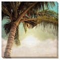 Vintage Palm Tree II Oversized Gallery Wrapped Canvas