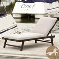 Christopher Knight Home Waveland Chaise Lounge with Cushion