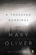 A Thousand Mornings (Paperback)