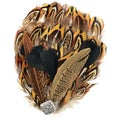 Natural Feather Pad-Multi-Pheasant