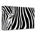 Dan Holm 'Zebra Stripes' Gallery-Wrapped Canvas