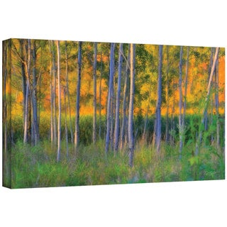 David Liam Kyle 'Stumpy Basin' Gallery-Wrapped Canvas