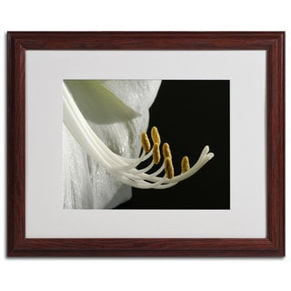 Kurt Shaffer 'Intimate Amaryllis' Traditional Framed Matted Art