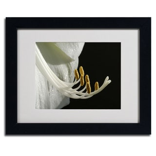Kurt Shaffer 'Intimate Amaryllis' Framed Matted Art