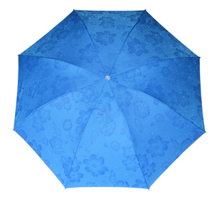 BlossomBrella Blue Poppies Umbrella