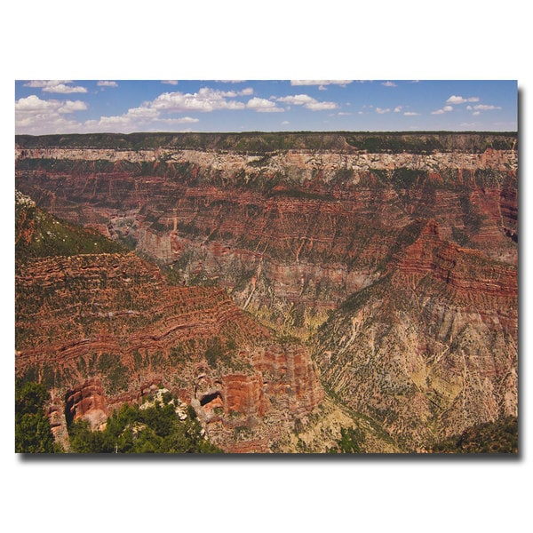 Ariane Moshayedi 'Green Canyons' Canvas Art