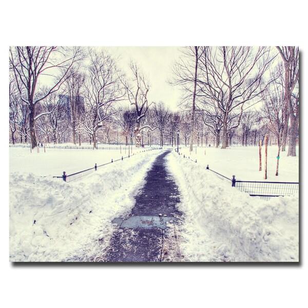 Ariane Moshayedi 'The Snow Effect' Canvas Art