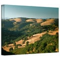 Steve Ainsworth 'Hills of California' Gallery-Wrapped Canvas