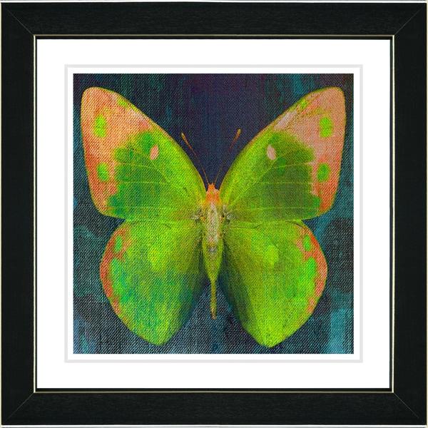 Studio Works Modern 'Lime Green Butterfly' Framed Print