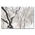 Ariane Moshayedi 'Snowy Trees' Canvas Art