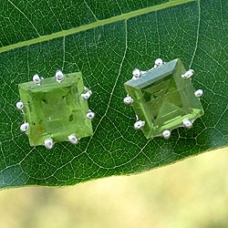 Sterling Silver 'Lucky Squares' Peridot Earrings (India)