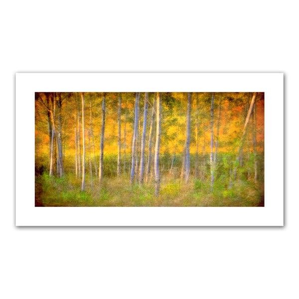 David Liam Kyle 'Into the Wood' Unwrapped Canvas
