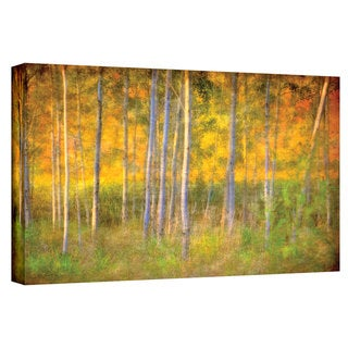 David Liam Kyle 'Into the Wood' Gallery-Wrapped Canvas