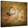 David Liam Kyle 'Lions' Gallery-Wrapped Canvas
