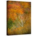 David Liam Kyle 'In Autumn' Gallery-Wrapped Canvas