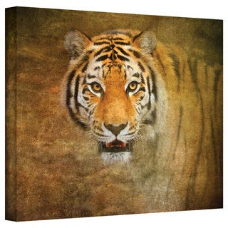 David Liam Kyle 'Watching Tiger' Gallery-Wrapped Canvas