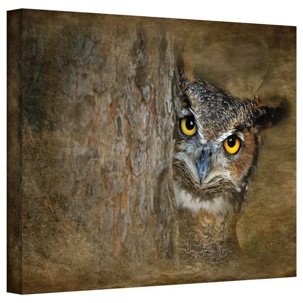David Liam Kyle 'Peeping Owl' Gallery-Wrapped Canvas