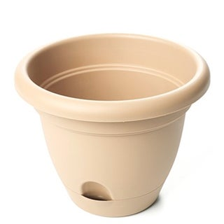 Bloem Craftsmen Lucca Planters (Pack of 12)