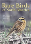 Rare Birds of North America (Hardcover)
