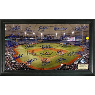 Tampa Bay Rays Signature Field Portrait